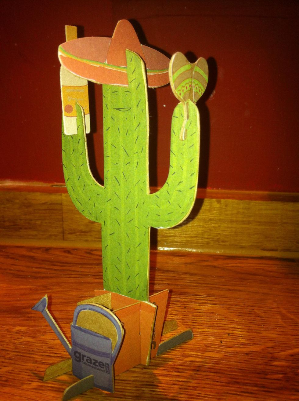 How to assemble  your graze spring cactus!